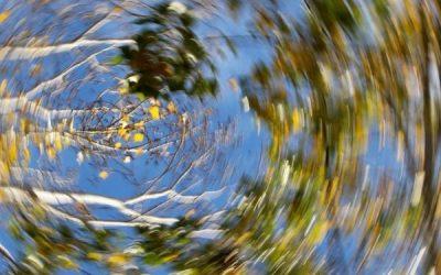 A clearer head on dizziness
